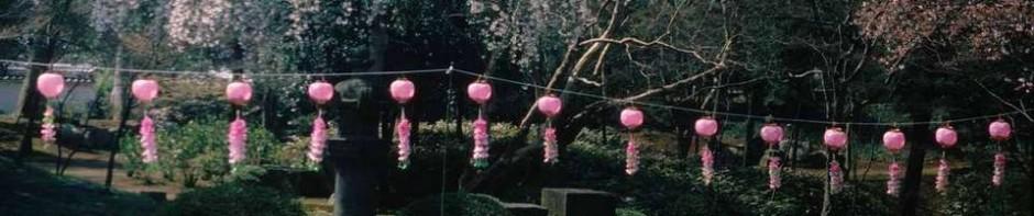 Japan, Garten, Lampions